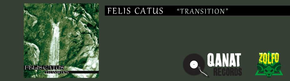 slide_felis